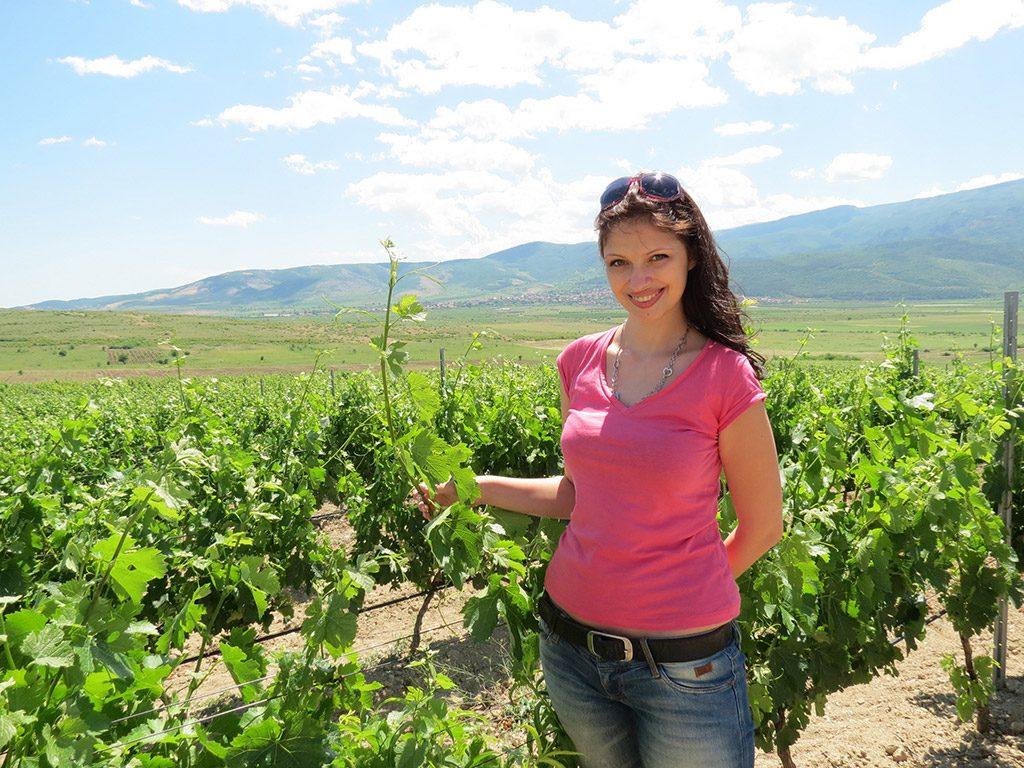 Villa Yustina boutique winery - vineyards